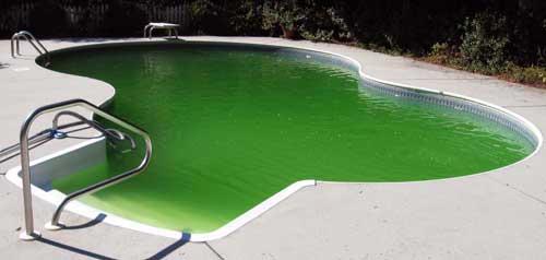 Agua da piscina verde raia 1 piscinas - Agua de piscina verde ...