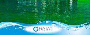 agua de piscina verde