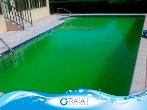 algas sensiveis ao cloro